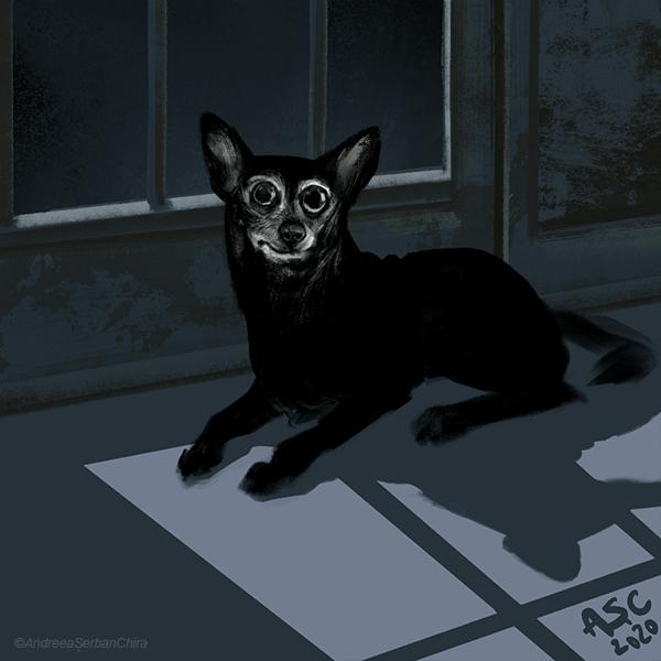 Moondog_flatcolors_site_compressed