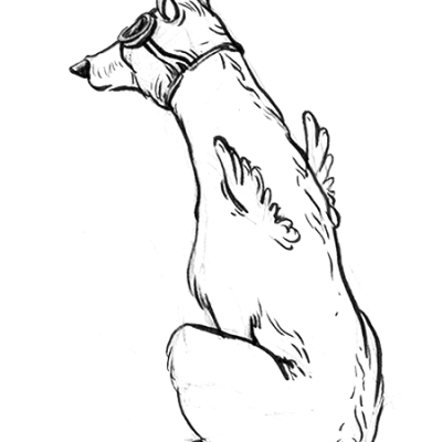 Sketch 11b_compressed