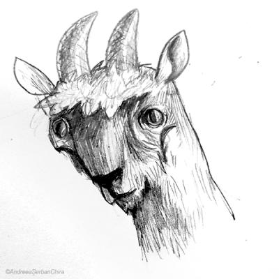 Sketch 27_compressed