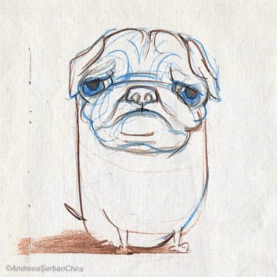 PillPug_Resized_Compressed