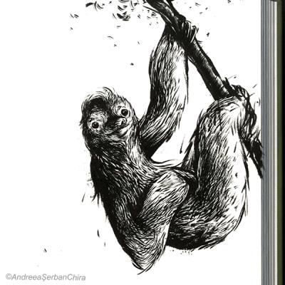 Slothy_Resized2